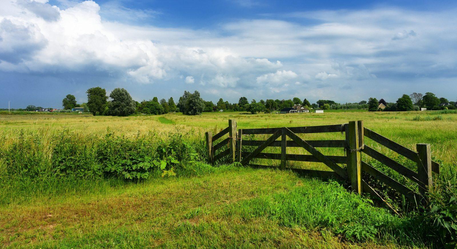 Soil, Water, Atmosphere at Wageningen University & Research – WUT - Wageningen University & Research – WUR - Informacje o kierunku