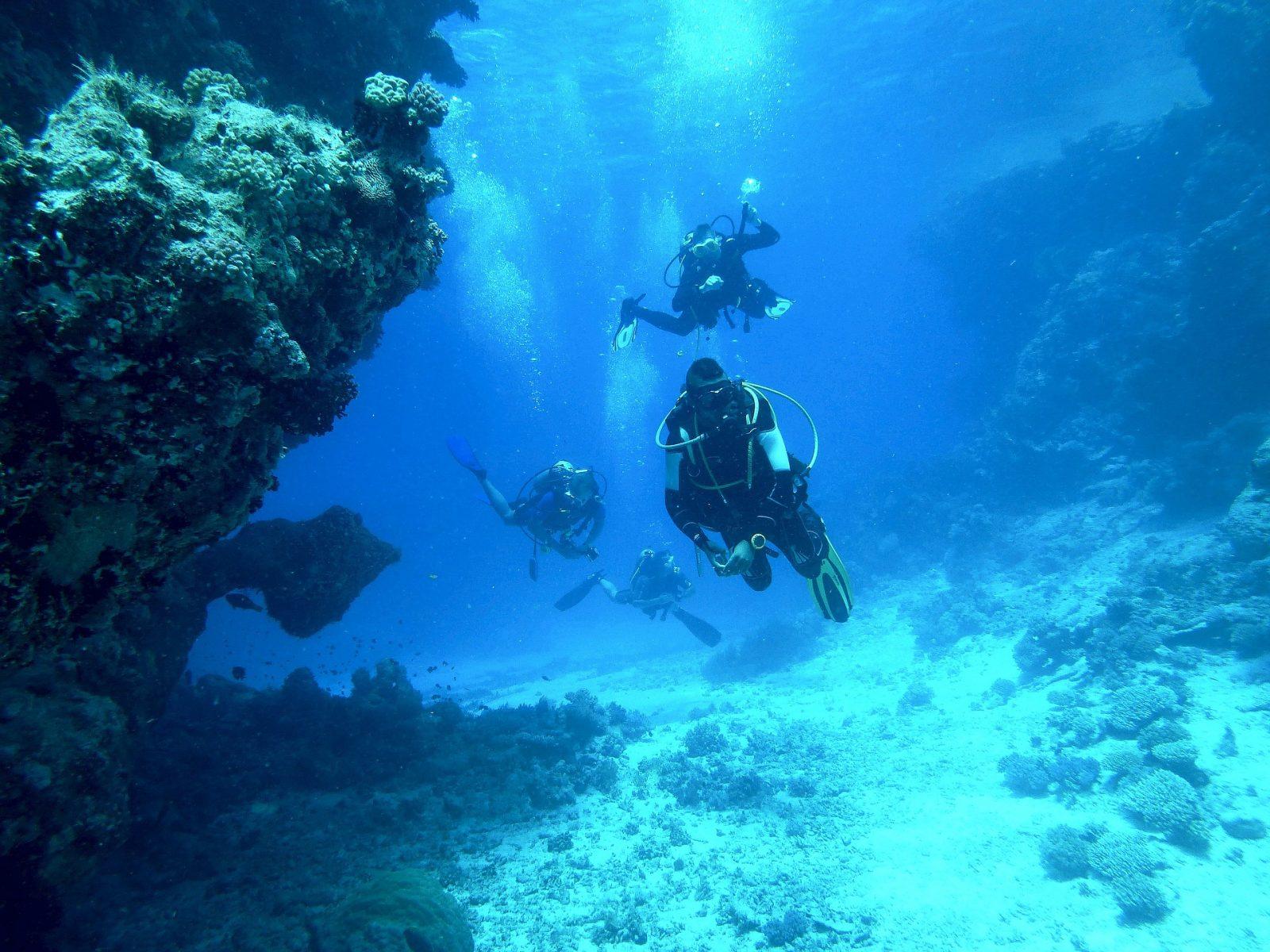 diving 813028 1920 1600x1200 - Studia na Malcie